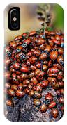 Ladybugs On Branch IPhone Case by Garry Gay