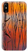 Lake Reeds And Sunset Colors IPhone Case