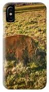 Lamar Valley Buffalo IPhone Case