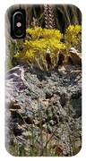 Lanceleaf Stonecrop Sedum 1 IPhone X Case