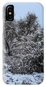 Landscape In The Snow IPhone Case