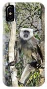 Langur Posing IPhone Case
