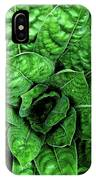 Large Green Display Of Concentric Leaves IPhone Case