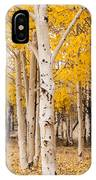 Last Of The Aspen Leaves IPhone Case