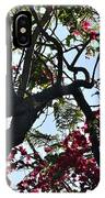 Late Afternoon Tree Silhouette With Bougainvilleas I IPhone Case