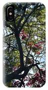 Late Afternoon Tree Silhouette With Bougainvileas II IPhone Case