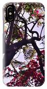 Late Afternoon Tree Silhouette With Bougainvilleas IIi IPhone Case