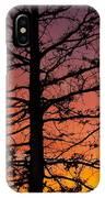 Late Autumn Sunset IPhone Case