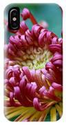 Lava Chrysanthemum IPhone Case