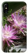 Lavendar Cactus Flowers IPhone Case