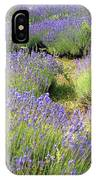 Lavender Field, Tihany, Hungary IPhone Case