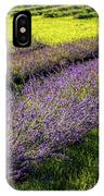 Lavender Fields Forever IPhone Case by Kendall McKernon
