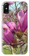 Lavender Tulip Tree Blossums   Spring     Indiana IPhone Case