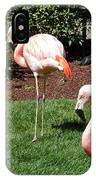 Lawn Ornaments IPhone Case