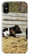 Lazy Cows And Weathered Wood IPhone Case