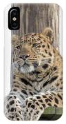 Lazy Leopard IPhone Case