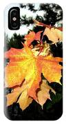 Leading The Way Into Fall IPhone Case