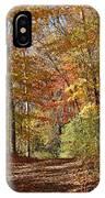 Leaf Covered Path IPhone X Case