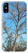 Leafless In Autumn IPhone Case