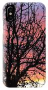 Leafless Silhouette IPhone Case