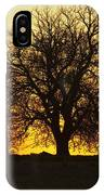 Leafless Tree Against Sunset Sky IPhone Case