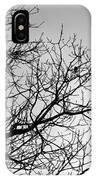 Leafless Twig IPhone Case
