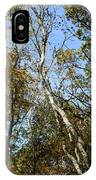 Leaning Birch IPhone Case