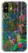 Leaves Changing Color As Autumn Approaches In Iguazu Falls National Park-argentina   IPhone Case