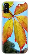 Leaves In Sunlight 4 IPhone Case