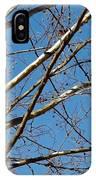 Lenox Sky IPhone Case