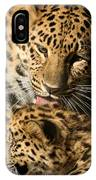 Leopard Cub Love IPhone Case