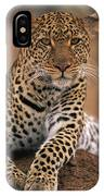 Leopard Panthera Pardus, Masai Mara IPhone Case