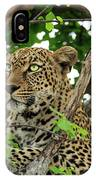 Leopard With Piercing Eyes IPhone Case