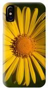 Leopard's Bane 10 IPhone Case