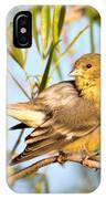 Lesser Goldfinch IPhone Case