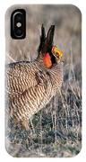 Lesser Prairie Chicken Displaying IPhone Case