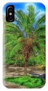 Leu Gardens Palm IPhone Case