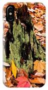 Lichen Castle In Autumn Leaves IPhone Case