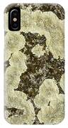 Lichen Design IPhone Case