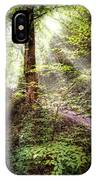 Light Along The Trail IPhone Case