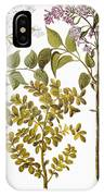 Lilac And Box, 1613 IPhone Case