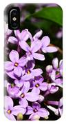 Lilac Bush In Spring IPhone Case