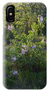 Lilac In Sunshine IPhone Case