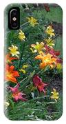 Lilies On Parade IPhone Case