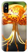 Lily Flowers Art Orange Tiger Lilies Giclee Baslee Troutman IPhone Case
