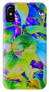 Limes Of Season  IPhone Case