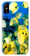 Lined Butterflyfish IPhone Case