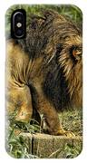 Lion Calling Females IPhone Case