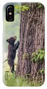 Little Bear Big Tree IPhone Case