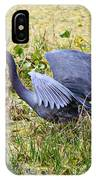 Little Blue Heron Walking In The Swamp IPhone Case